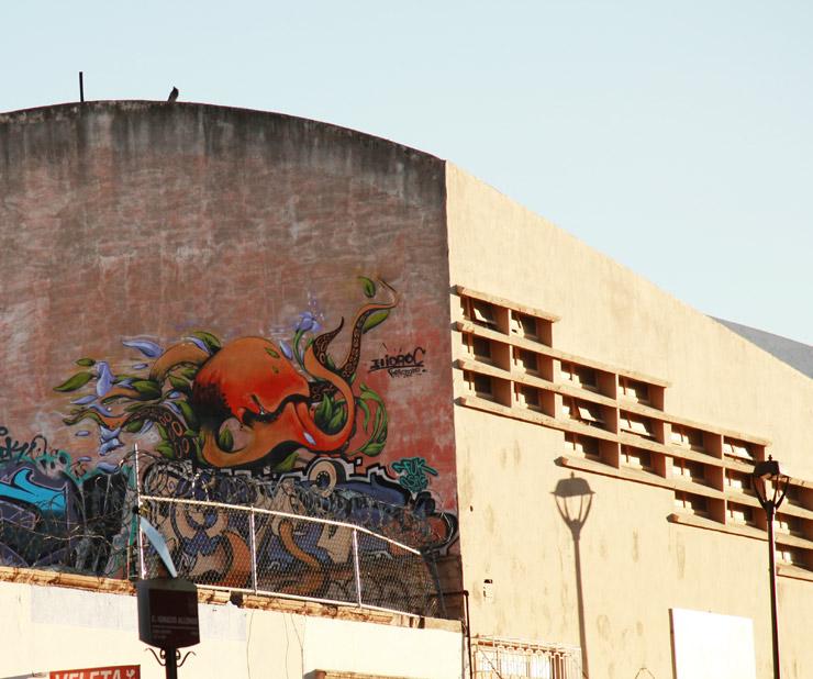 brooklyn-street-art-hidroc-jaime-rojo-chihuahua-01-16-web
