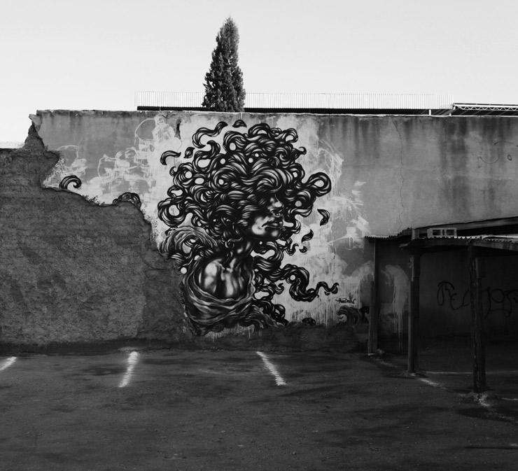 brooklyn-street-art-paola-delfin-jaime-rojo-chihuahua-01-16-web-3