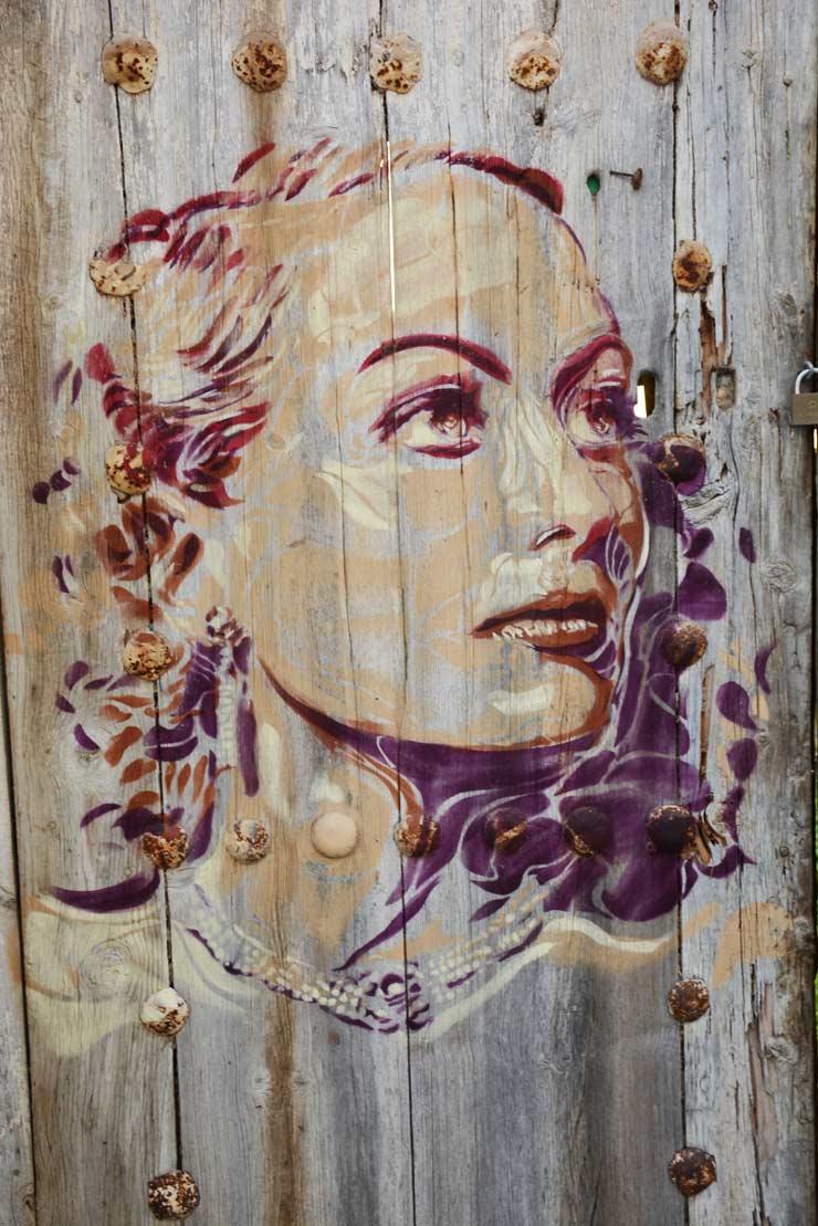 brooklyn-street-art-btoy-lluis-olive-bulbena-fanzara-02-16-web