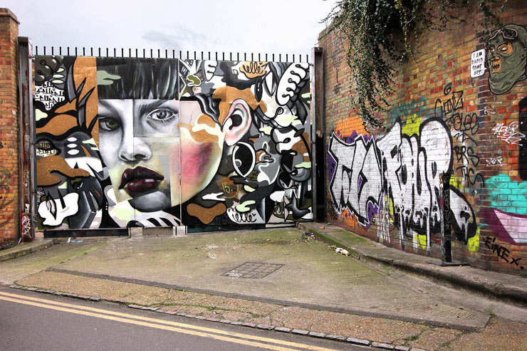 brooklyn-street-art-elle-saatchi-xx-allison-crawbuck-london-02-16-web-1