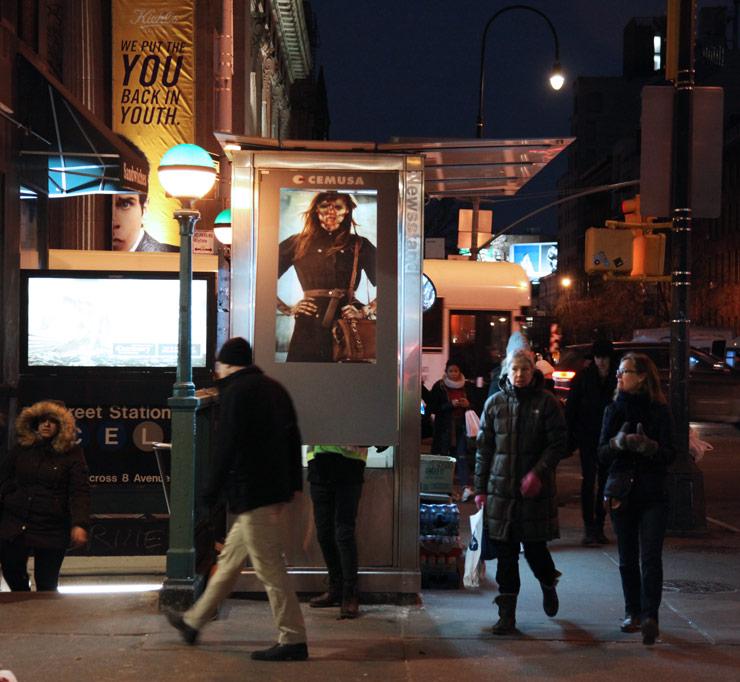 brooklyn-street-art-vermibus-jaime-rojo-02-16-web-9