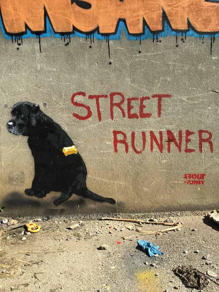 brooklyn-street-art-About-Ponny-around730-bologna-rusco-03-16-web-2
