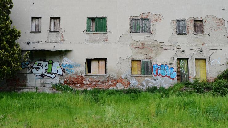 brooklyn-street-art-biancoshock-italy-03-16-web-6
