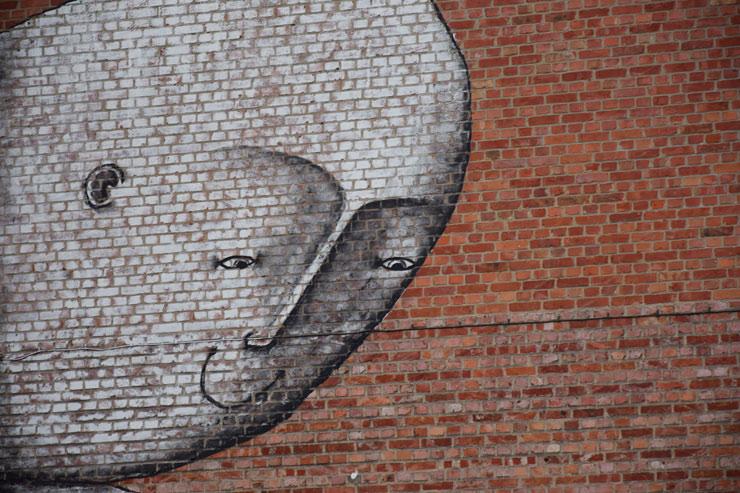 brooklyn-street-art-bisser-Existenz-2016-Heverlee-Belgium-web-3