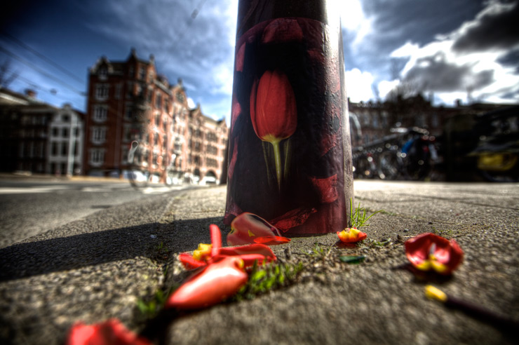 brooklyn-street-art-bon-bon-amsterdam-03-16-web-1