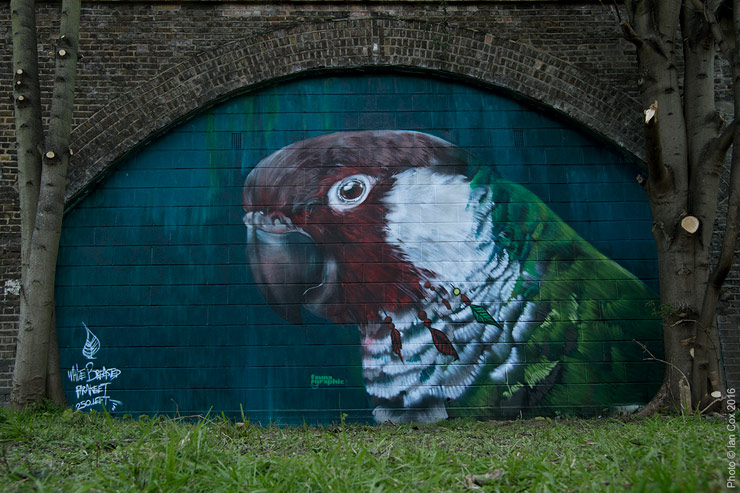brooklyn-street-art-Endangered13_fauna-graphic_Ian_Cox_london-04-2016-web-3