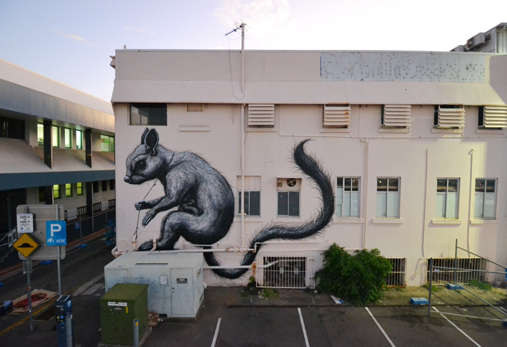 brooklyn-street-art-ROA-Townsville-2015-web-1