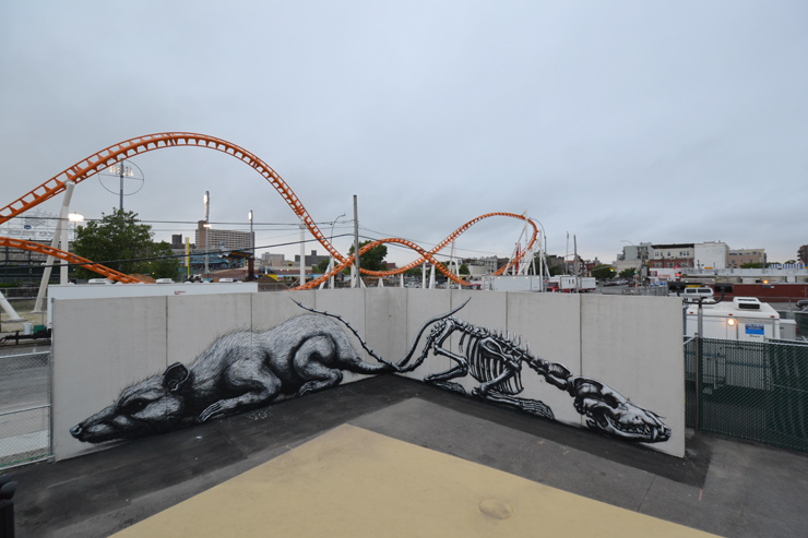 brooklyn-street-art-ROA-coney-island-2015-web