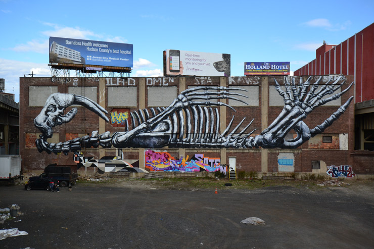 brooklyn-street-art-ROA-jersey-city-2015-web