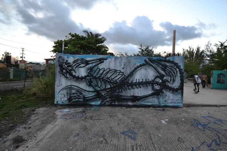 brooklyn-street-at-ROA-SAN-Juan-PR-2015-web-3