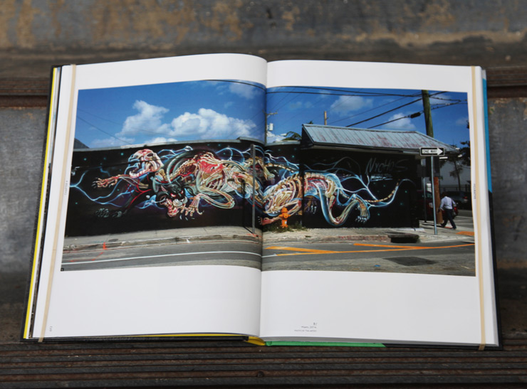 brooklyn-street-art-Jaime-Rojo-street-art-today-book-review-06-2016-web-5