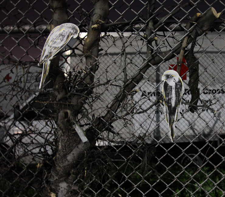 brooklyn-street-art-birds-jaime-rojo-05-15-16-web-1