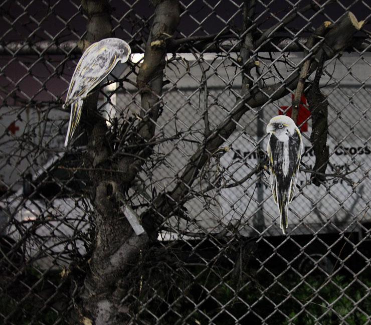 brooklyn-street-art-birds-jaime-rojo-05-15-16-web-1