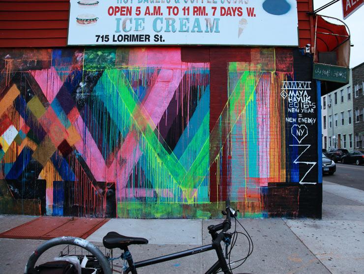 brooklyn-street-art-maya-hayuk-jaime-rojo-05-01-16-web-1