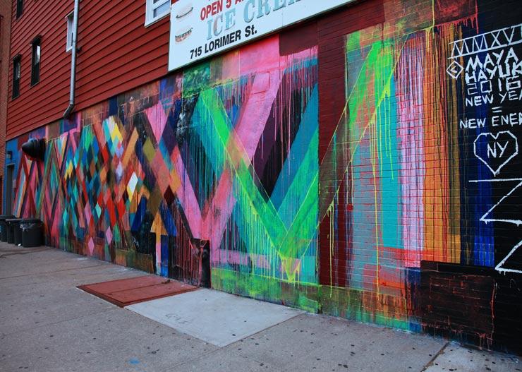 brooklyn-street-art-maya-hayuk-jaime-rojo-05-01-16-web-2