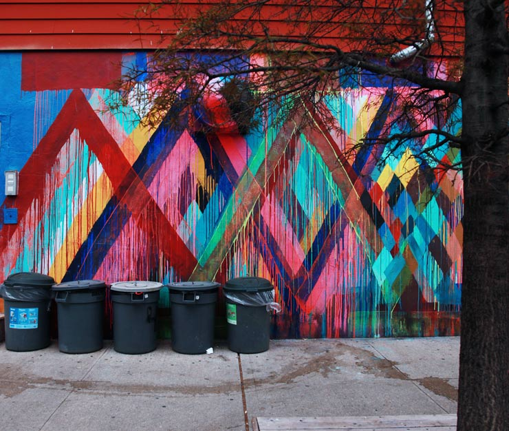 brooklyn-street-art-maya-hayuk-jaime-rojo-05-01-16-web-4