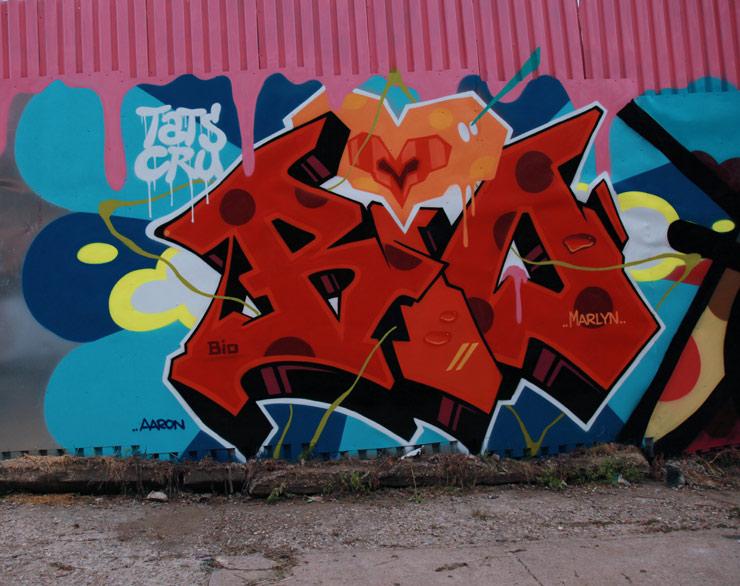 brooklyn-street-art-bio-tats-crew-jaime-rojo-06-05-2016-web
