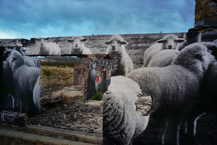 brooklyn-street-art-jetsonorama-sheep-cow-springs-navajo-nation-06-16-web