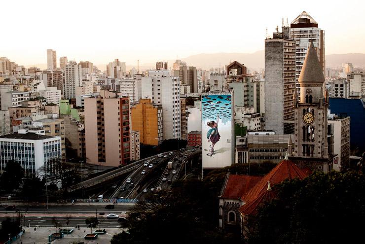 brooklyn-street-art-apolo-torros-notacrime-sao-paulo-brazil-07-16-web