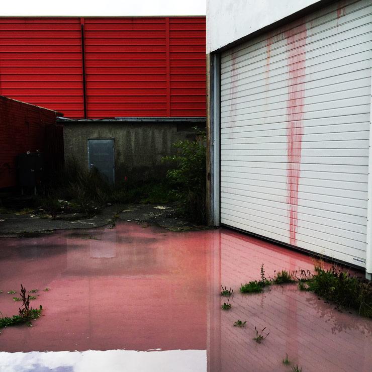 brooklyn-street-art-fintan-magee-tor-staale-moen-nuart-stavanger-09-2106-web-4