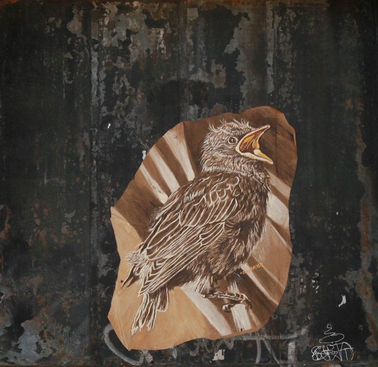 brooklyn-street-art-lmnopi-jaime-rojo-09-18-2016-web-1