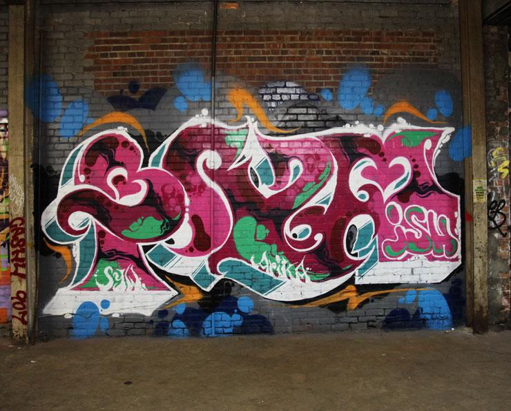 brooklyn-street-art-brzm-ish-syw-wastedland-jaime-rojo-detroit-09-16-web