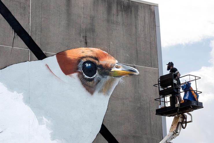 brooklyn-street-art-phat1-lady-diva-martha-cooper-onou-tahiti-10-16-web-1