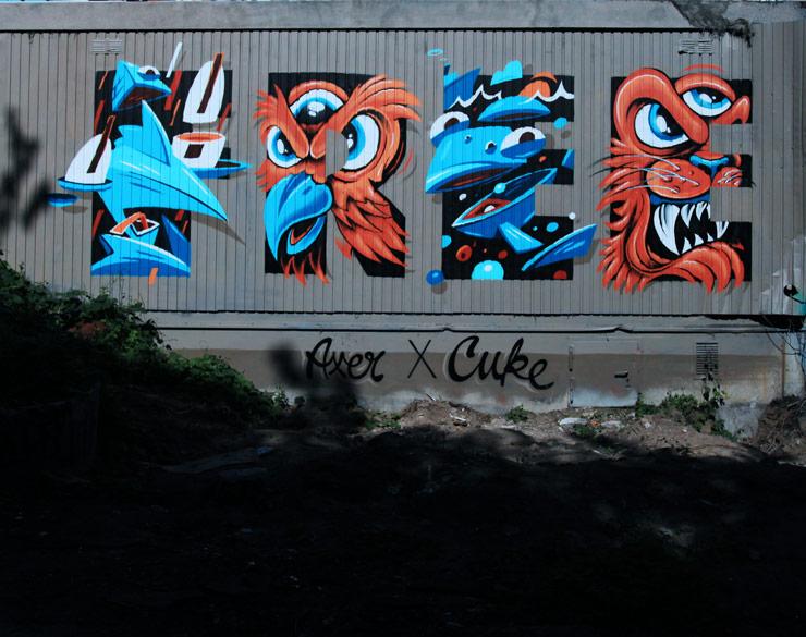 brooklyn-street-art-axer-cuke-jaime-rojo-11-27-2016-web