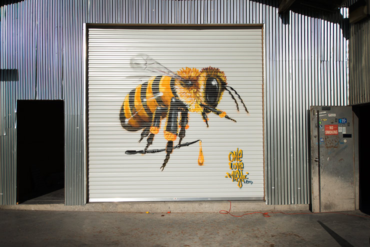 brooklyn-street-art-louis-masai-lmnotree-oakland-10-16-web-4
