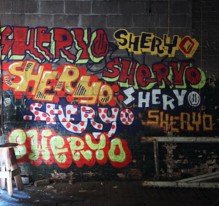 brooklyn-street-art-sheryo-jaime-rojo-11-06-16-web