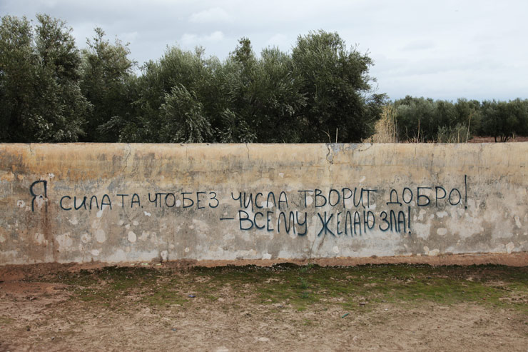 Where Graffiti Art Is The Rose Of The Desert Spraying Outside The