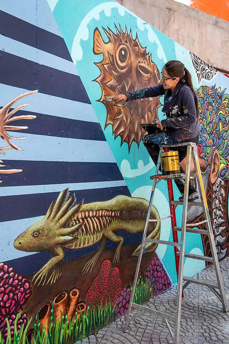 Mexico brooklyn street art