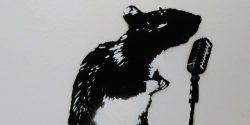 Blek Le Rat Tours the US South
