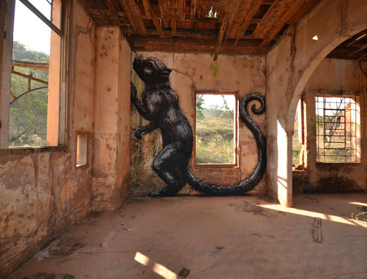 ROA in Tunisia and Brazil — New Homes for His Wildlife