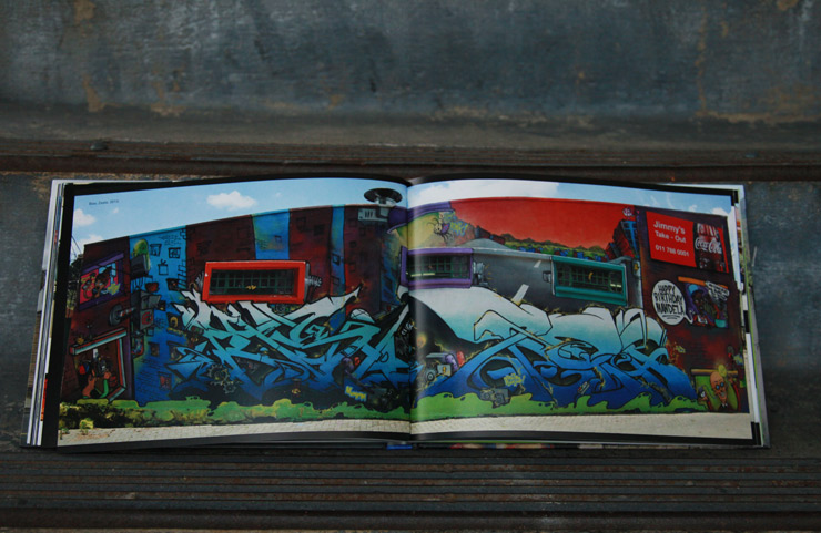 Graffiti South Africa, The Book