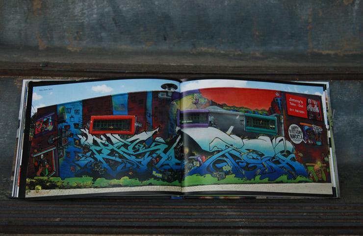 Graffiti South Africa, The Book