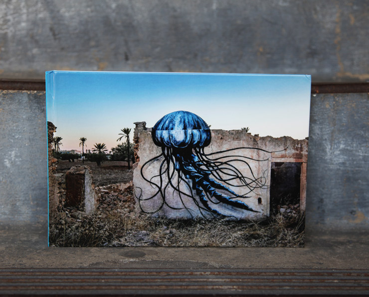 """Djerbahood"" Book About Tunisian Open-Air Museum Of Street Art"