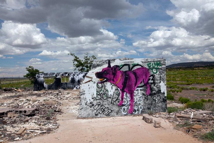 LOLA, Atomic Sheep Dog Drinking from the Uranium Mine Per Jetsonorama