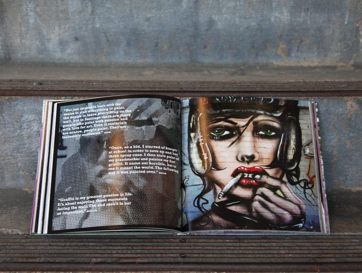 Street Art Santiago : A Captivating Look and Insightful Read