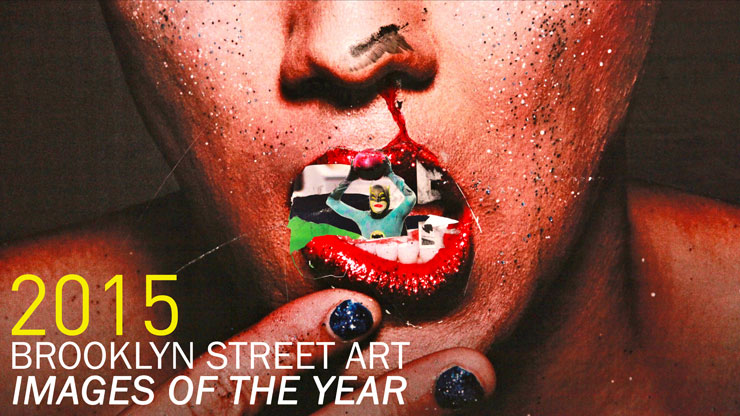 "BSA ""Images of the Year"" for 2015 : New Video"