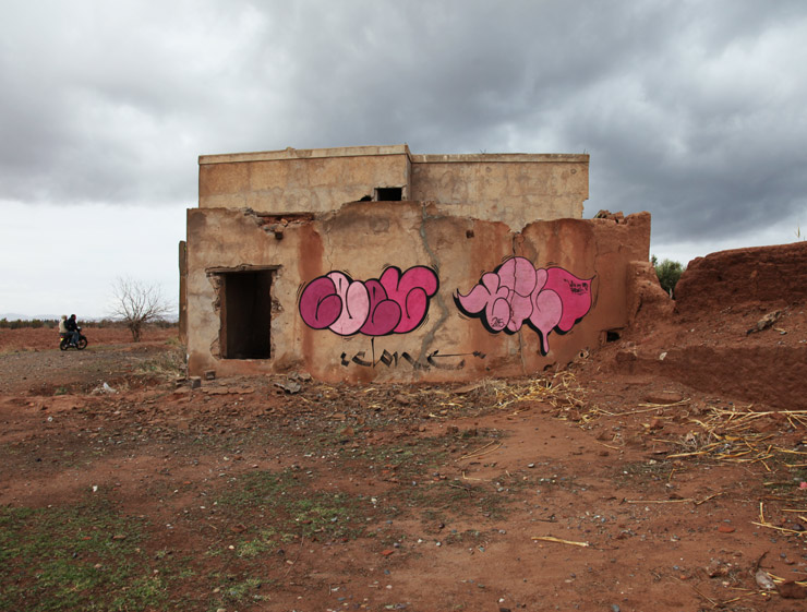 Where Graffiti Art Is The Rose of The Desert : Spraying Outside the Jardin