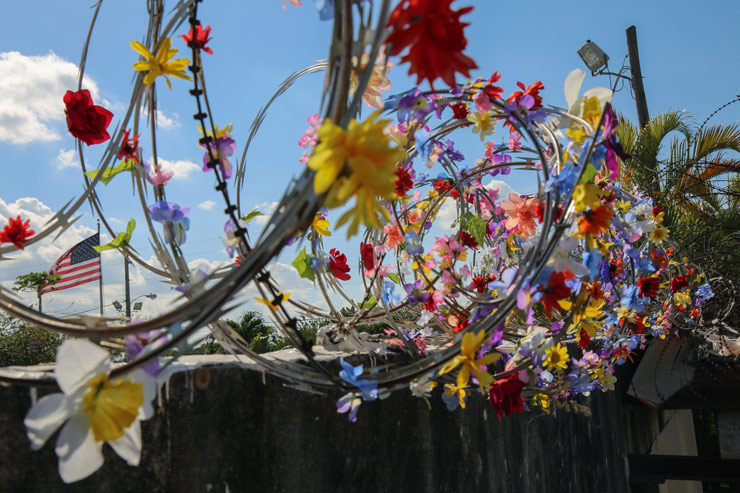 Icy & Sot, Razor Wire & Flowers Along a Wall in Miami