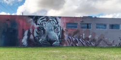 Wild Animals Run in the Streets: Wynwood Is A Zoo