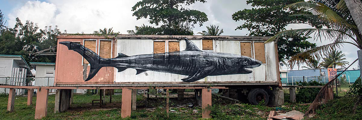 ROA and Martha Cooper in Puerto Rico: Dispatches from the Island
