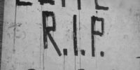 "Elfo says ""Elite: R.I.P. in 2020"" on Walls of Verona"